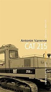 cat215.jpeg